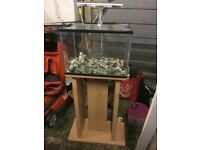 Small fish tank on stand ,possible free delivery