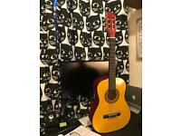Acoustic Guitar - Beginner?