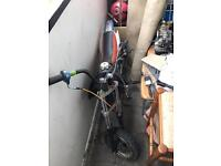 Xsport 125cc pitbike fully running