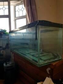 330L Fish Tank