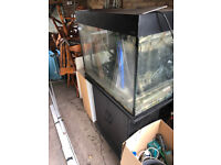 Good condition 190L Aqua one fish tank with filter and lighting