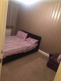 Lovely double bedroom close to bus stop and Jubilee/Northern line stations Burnt Oak,Queensbury,