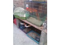 3 x hamster cages and 1 gerbil cage