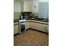 Double room to rent in 3bed semi in Mickleover,Derby