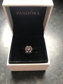 Pandora birthstone feb charm
