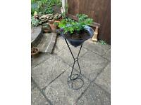Plant stand couple of plants in