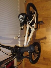 Pirate boy's bicycle