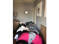 Perfect big single room available in central Brighton with nice view of the sea