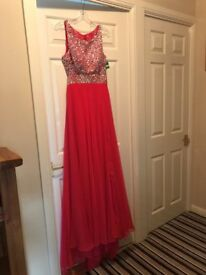 Pink Prom Dress (Never Worn) Size 10