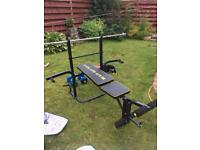Golds Gym weights bench