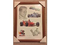 """Tribute to Michael Schumacher"" picture"