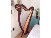 Clive Morley Elysian 34 string lever harp