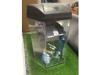 Aquarium with ultraviolet water steriliser and filter