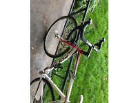 Forme carbon fork road bike STOLEN