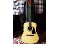 Guitar Fender Acoustic with case. Ideal beginner.