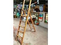 Wooden Extendable ladder