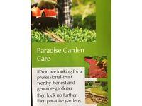 Gardening services Surrey, Paradise Garden care