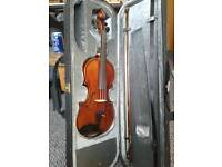 violin accoustic new