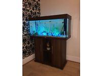 FISH TANK £170 ONO