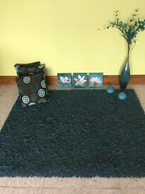 Teal Rug, 4 cushions, 3 canvasses , large vase