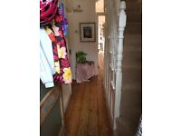 Hygge home looking for kind and friendly lodger