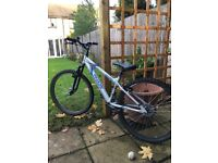 Apollo Phaze Mountain Bike