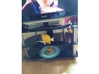 T.v Glass Table