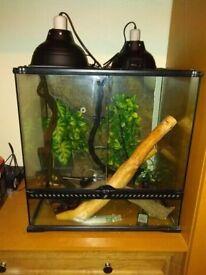 Exo-terra chameleon complete setup (no chameleon)