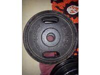 Bodymax 25kg Olympic plates