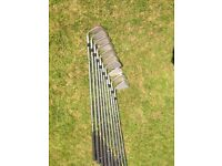 Set of Lynx Golf Irons 2 - SW