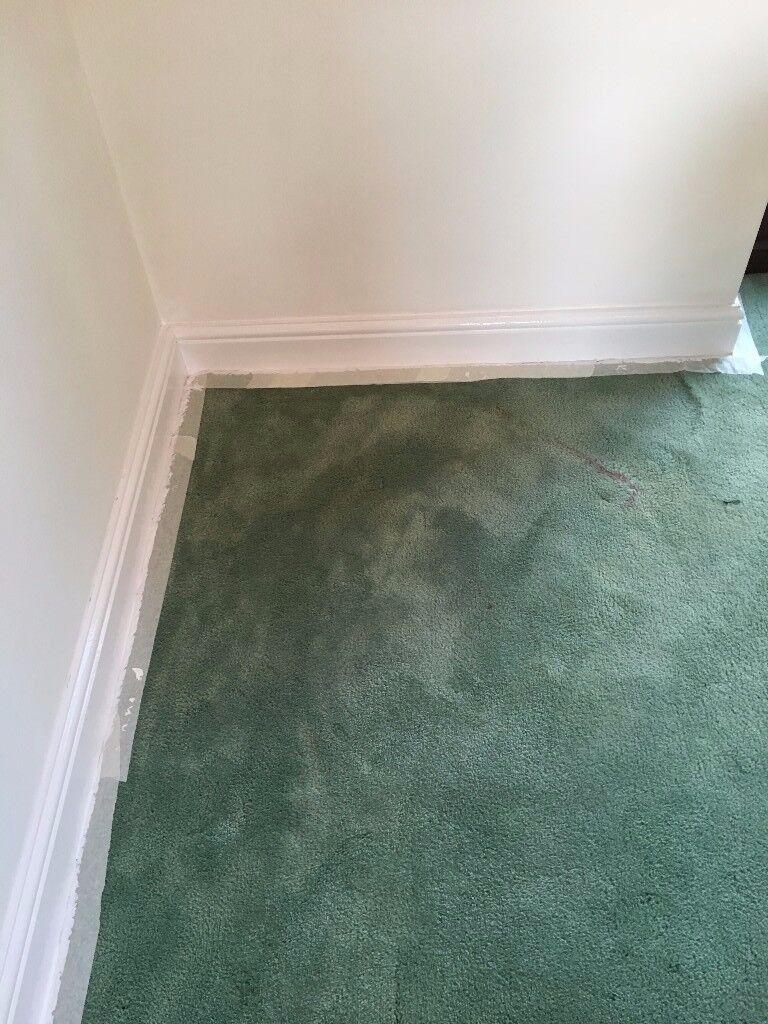 Sage Green Carpet - 5m x 3.5m