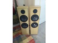 two floor standing speakers
