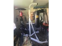 Boxing bag and punch ball with stand