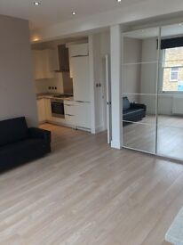 LUXURY ONE BED FLAT ON WANDSWORTH ROAD SW8