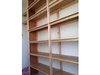 Carpenter/Sash window specialist/Painting &docorating