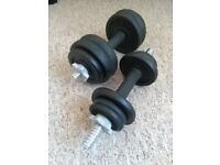 Pair of Dumbells For Sale