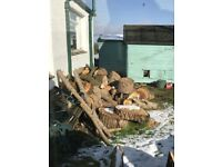 Unseasoned logs for sale Edinburgh - Delivery available