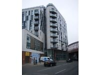 ***FRESH APTS*** Secure, Underground, Allocated Parking Space, Close To***SPINNINGFIELDS***(4444)