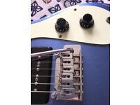 The Ventures Guitar