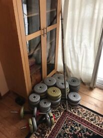 York weights and bench