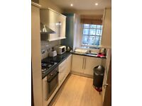 Beautiful comfortable presented Room in Nicolson street apartment Bills all included