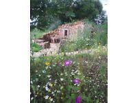 RHS Landscape Gardener/ Designer