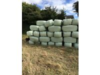 2017 Haylage for sale
