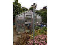 10X8 greenhouse