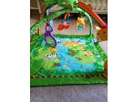 Fisher Price Rainforest play gym and GALT animal playnest