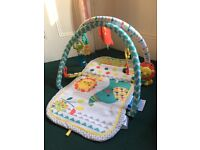 Fisher price baby gym ( perfect condition)