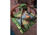Rainforest play gym and swing