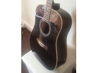Acoustic guitar plus case