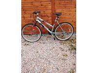 Apollo Revival Shimano 18 Speed Bike