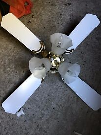 ** REDUCED PRICE ** Ceiling Fans with built in lights - EXCELLENT Condition